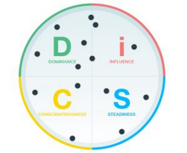 DISC Teamanalyse